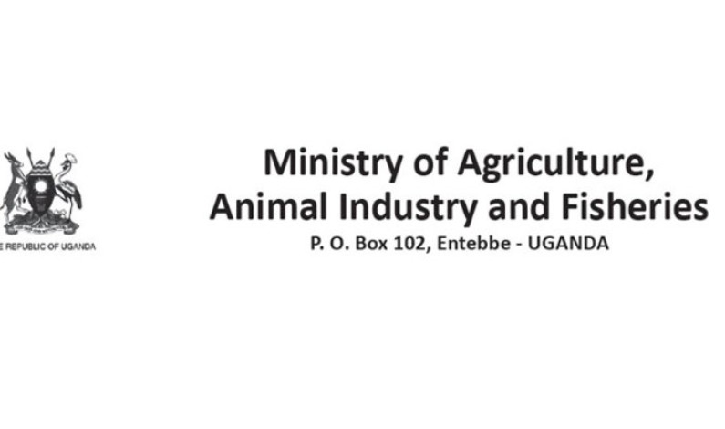 Logistics Officer needed at Ministry of Agriculture, Animal Industry and Fisheries (MAAIF)