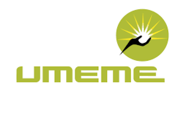 Business & Reporting Analyst needed at Umeme