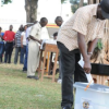 Fate of LC elections still unkwown