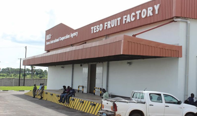 Coca cola pleased with $12M fruit factory in Uganda