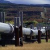 Total alerts public of fake jobs adverts in relation to Tanzania-Uganda oil pipeline project