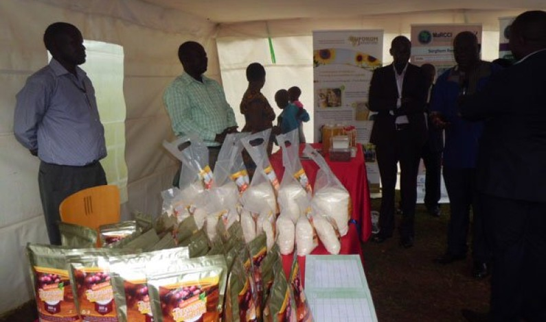 Uganda Christian University (UCU) partners with private sector in rice, coffee value addition