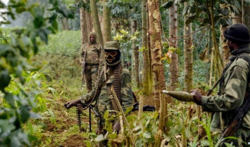 Congo rebels abduct Ugandans.