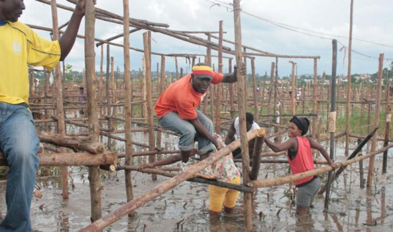 NEMA to reclaim endangered Lubigi-Mayanja wetland