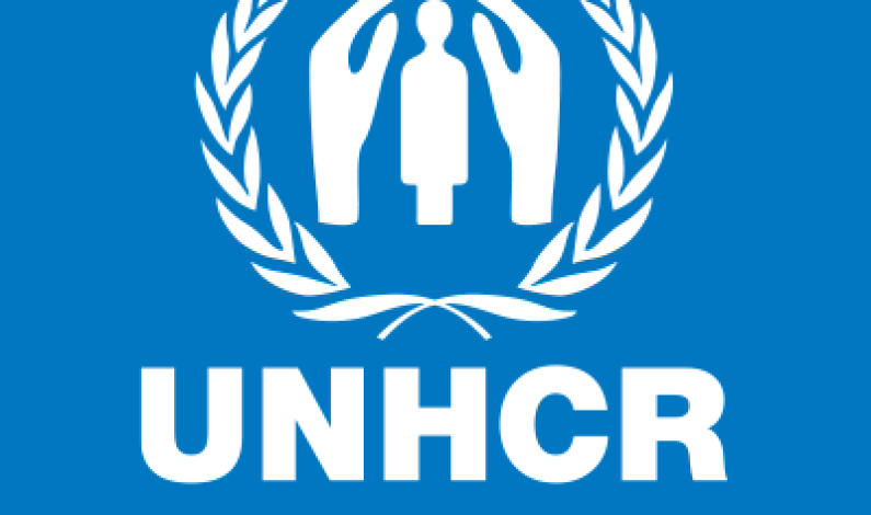 Senior Protection Assistant needed at United Nations High Commissioner for Refugees (UNHCR)