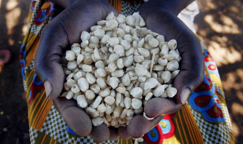 Ssempijja admits to alarming food shortages in the country