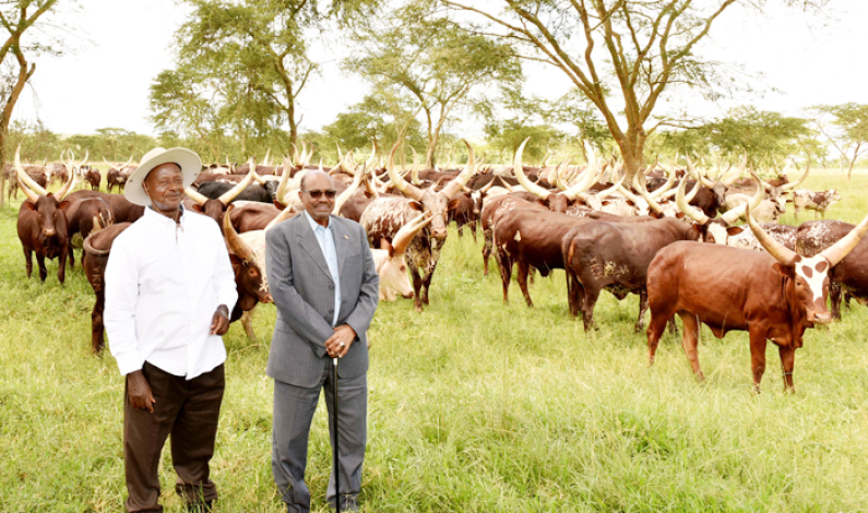 Presidents Museveni, Bashir commit to trade and investment