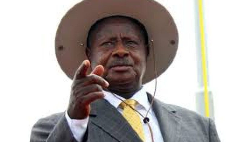 Museveni fires six in Education ministry over fraud
